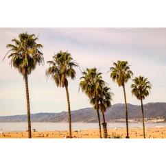 Santa Monica 2